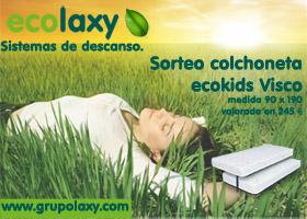 ECOLAXY DE GRUPO LAXY, COLCHONETA VISCO